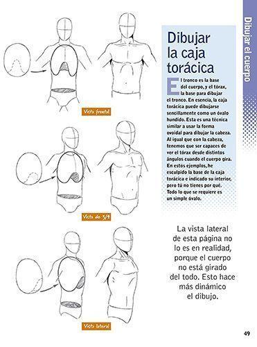 Como Dibujar El Cuerpo Humano 5 Libros De Anatomia Artistica Libros De Anatomia Cuerpo Humano Anatomia Artistica