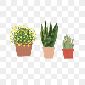 Hand Painted Potted Green Plants Hand Painted Potted Plants Green Plant Flower Small Yellow Flower Green Radiation Protection Png Transparent Clipart Image A Yellow Flowers Flower Clipart Green Plants