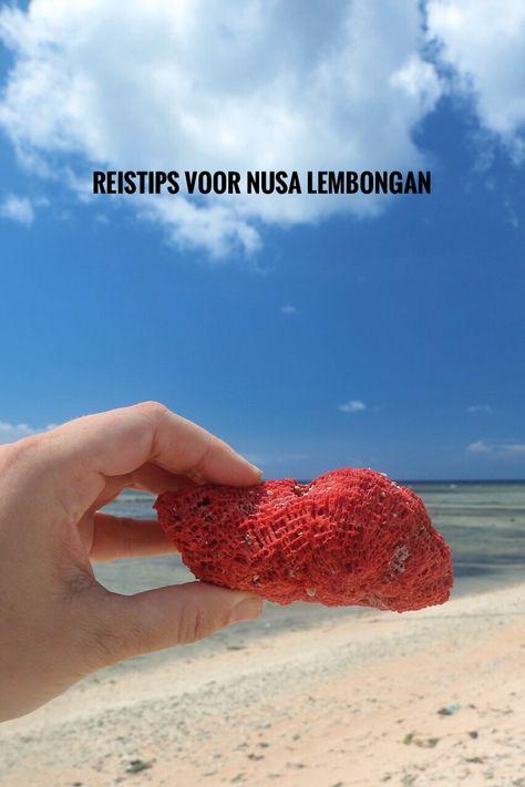 Haal het beste uit je trip van Bali naar Nusa Lembongan