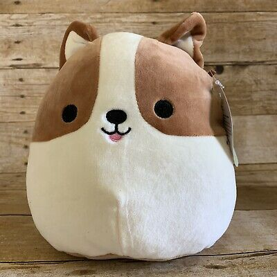Kellytoy Squishmallow Dog Corgi 8 New Puppy Plush Ebay Plush Stuffed Animals Cute Stuffed Animals Kawaii Plush
