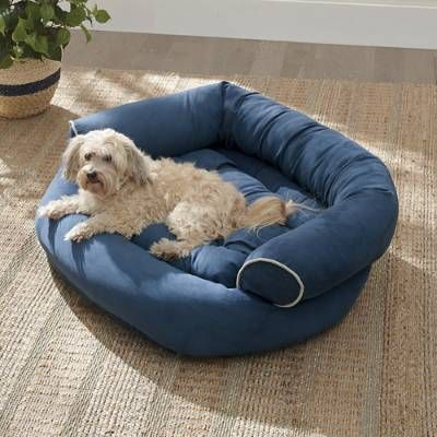 Sofa Dog Bed Grandin Road In 2020 Dog Bed Dog Sofa Bed Dog Beds For Small Dogs