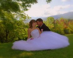 Above The Mist Wedding Services Was Created Solely To Make Your Day Exceptional