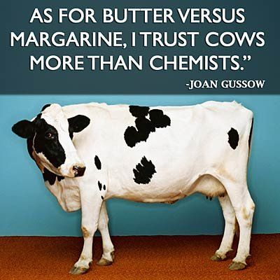 Health Quotes Inspirational Cow Health Quotes Health Funny Pictures Animal Science In 2020 Health Quotes Inspirational Health Quotes Cow