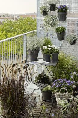 Romantyczny Zakatek Na Balkonie Balcony Plants Small Balcony Garden Apartment Balcony Garden