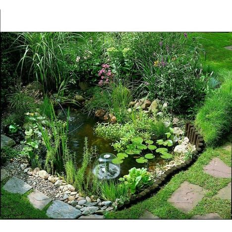 Ubbink Kit Bassin Start 250 Litres Bassin De Jardin Jardin D Eau Jardin Aquatique Interieur