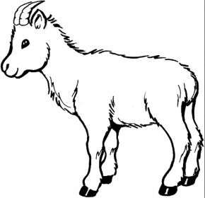 Dental 1 Coloring Pages Coloring Page Book Coloring Pages Goat Picture Shape Coloring Pages
