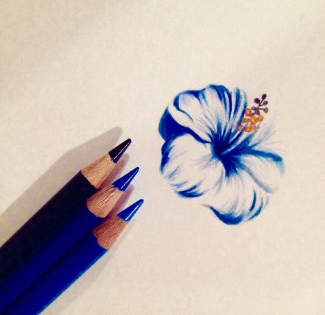 How To Draw A Hibiscus Flower Drawing Drawings Drawings Pinterest