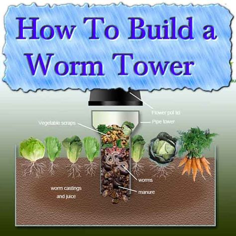 Compost How To Build a Worm Tower. Great idea for extra scrap you can't put in your compost or stand alone worm tower. The site has other useful info too. Organic Gardening, Gardening Tips, Vegetable Gardening, Container Gardening, Jardin Decor, Bokashi, Tower Garden, Garden Compost, Worm Composting