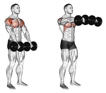 Standing Dumbbell Front Raises | Shoulder workout, Shoulder mass ...