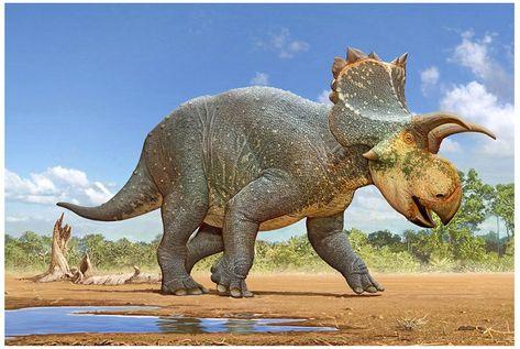 230 Ideas De Dinosaurios Dinosaurios Animales Prehistóricos Prehistorico