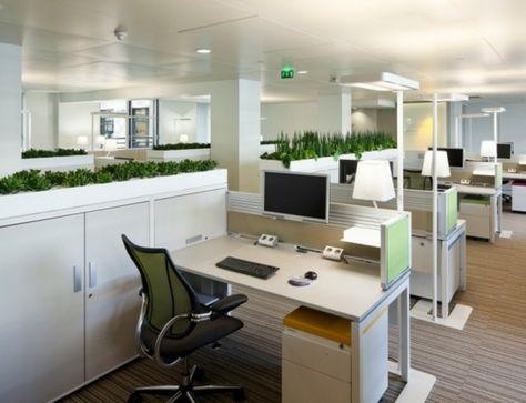Aménagement de plantes dintérieur pour le bureau de travail