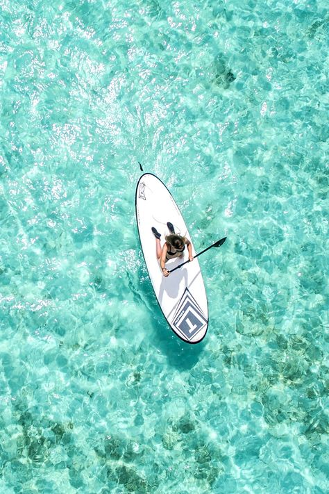 Things to do in The Maldives