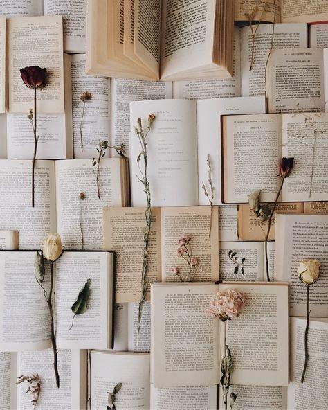 romantic meetings — like-fairy-tales: By: Stefie |stefiereads