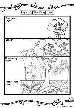 Rainforest Lesson Activities Rainforest Ecosystem Cool Coloring