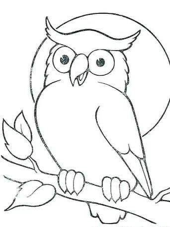 Pin By Larisa Ignatova On Sohrani In 2020 Owl Coloring Pages Owls Drawing Bird Drawings
