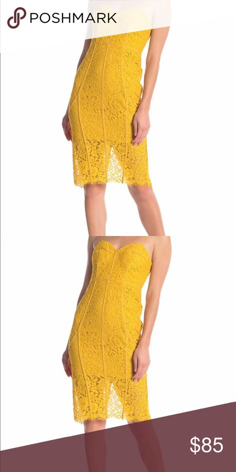 Dress Sophia Lace Dress Nwt Mustard Color Garden Party Dress