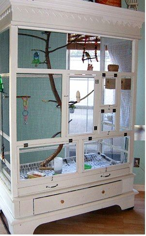 The owner and creator of this armoire-turned-aviary didn't always keep such an e. The owner and creator of this armoire-turned-aviary didn't always keep such an elaborate home for her birds. Diy Bird Cage, Bird Cages, Parrot Cages, Sugar Glider Cage, Sugar Gliders, Zebra Finch, Bird House Kits, Bird Aviary, Paludarium