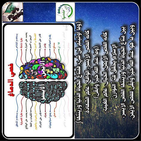 Understanding Embracing Your Learning Organizing Style Right Brain Left Brain Right Brain Nursing Mnemonics