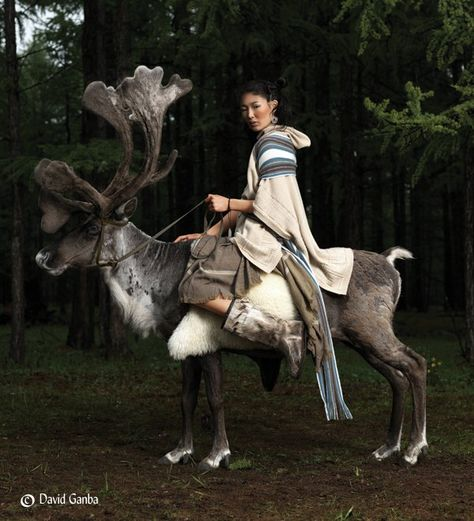 Women Riding a Reindeer, Mongolia on We Heart It Mongolia, Potnia Theron, Foto Fun, World Cultures, People Around The World, Larp, Character Inspiration, Cute Animals, Creatures