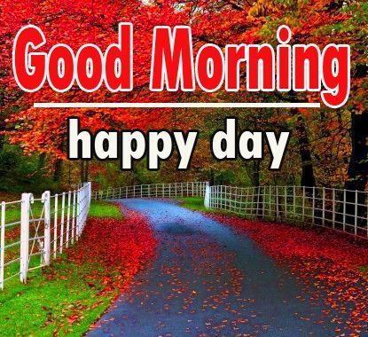 Nature Good Morning Images Free Good Morning Images Good Morning Images Morning Images