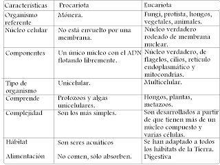 Cuadros Comparativos Diferencias Entre Células Procariotas Y Eucariotas Cuadro Comparati Células Procariotas Celula Procariota Y Eucariota Celula Eucariota