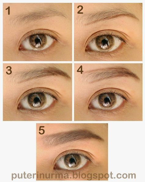 The Published Drafts Of A Procrastinator Tips Membuat Alis Tebal Alami Bentuk Alis Tutorial Makeup Trik Makeup