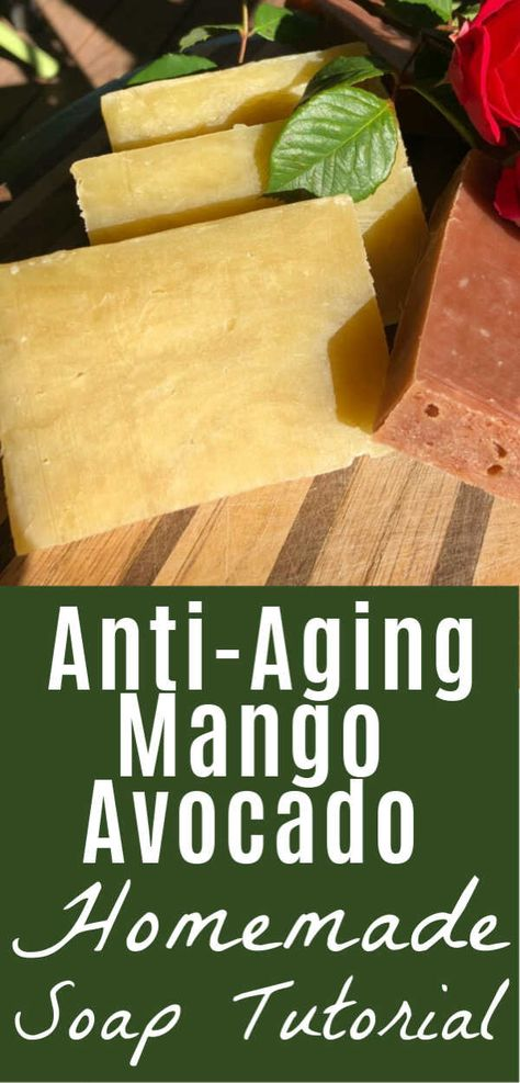 Mango Butter and Avocado Oil are two of the most moisturizing anti-aging oils you can use for making homemade soaps! This hot process soap recipe and directions are so easy, and you'll love these conditioning, sweet smelling bars. Two recipe variations, too! Your skin will love these toxin-free, natural soaps. No curing required! #soap #soapmaking #homemade #natural #handmade #coldprocess #hotprocess #ideas #recipe #herbal #tutorial #healingharvesthomestead
