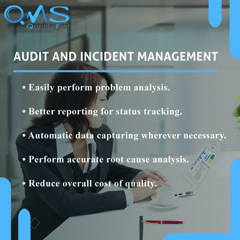 Audit and Incident Management