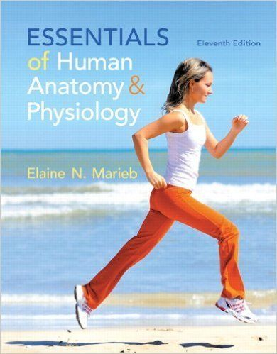 Pin On Test Bank For Essentials Of Human Anatomy Physiology 11th Edition By Elaine N Marieb