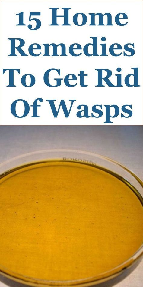 15 Home Remedies To Get Rid Of Wasps Yellow Jackets Hornets Etc And Their Nests This Guide Shares Insigh Get Rid Of Wasps Wasp Repellent Wasp Nest Removal