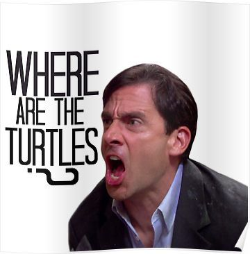 'Michael Scott - Where Are the Turtles?' Poster by TellAVision Stupid Funny Memes, Funny Relatable Memes, Funny Stuff, Funny Things, Random Stuff, Office Graphics, The Office Show, Modern Family Quotes, Office Birthday