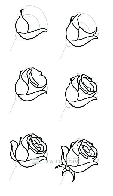 Rose Drawing Video A Simple Rose Drawing Lets Learn How To Draw A Flower Drawing Tutorials Flower Drawing Tutorial Step By Step Roses Drawing