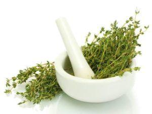 فوائد الزعتر للمعدة والقولون أسرار ثم الكشف عنها لم تشارك من قبل على الانترنت إك Homemade Cough Remedies Health Benefits Of Thyme Natural Remedies For Bloating