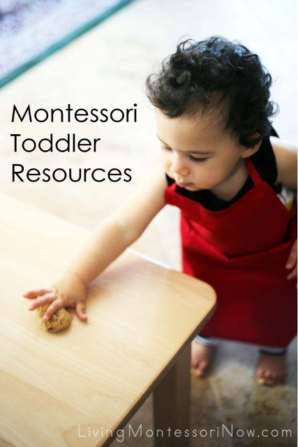 Montessori Toddler Resources