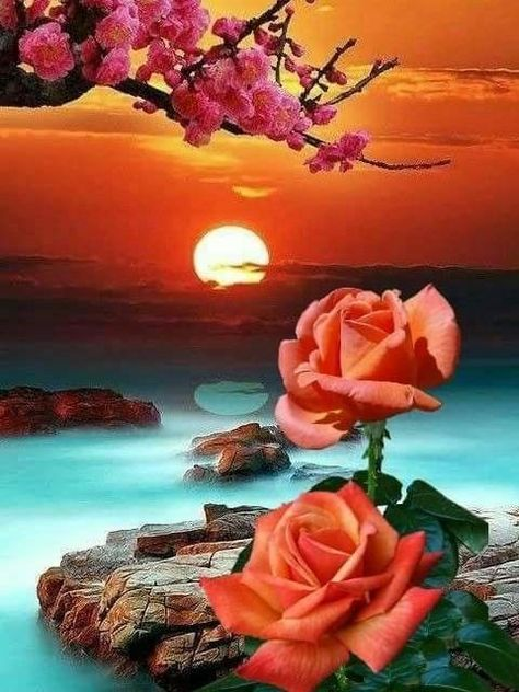Orange Rose Lotus Moon - Diamond Painting Kit - FV3231 / 20x28/50x70cm