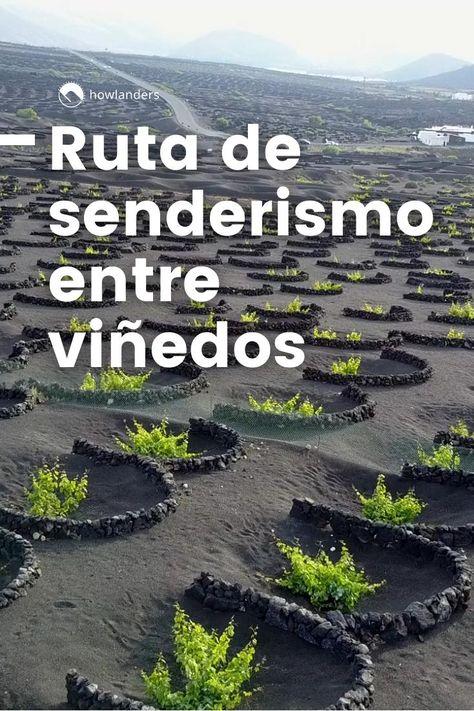 Ruta De Senderismo Cata De Vinos En Lanzarote Video Video Senderismo Viajar Por España Ruta De Senderismo