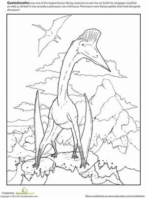 Quetzalcoatlus Worksheet Education Com Dolphin Coloring Pages Coloring Pages Dinosaur Coloring