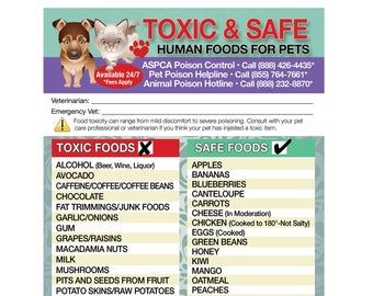 Poisonous Toxic Plants Flowers Trademarked For Pets Dogs Cats Etsy Cat Emergency Dangerous Foods For Dogs Pet Emergency