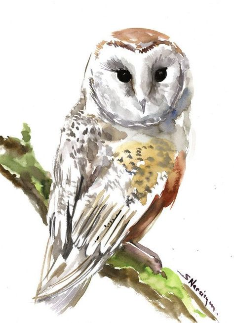 Image Result For Watercolor Painting Owls Eulen Aquarell