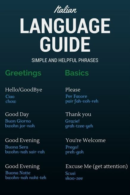 graphic regarding Italian Phrases for Travel Printable named Italian Language Advisor - Straightforward Italian Text and Words and phrases