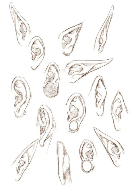 Some variations on ears, realistic and fantasy.
