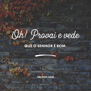Salmos 34 8 Ntlh Nova Traducao Na Linguagem De Hoje Com Imagens