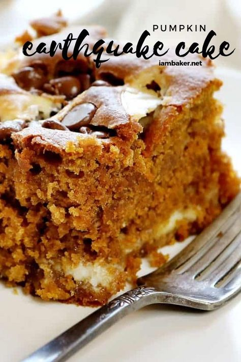Make this Pumpkin Earthquake Cake this winter season. So easy to do and so good to eat. This cake is similar to a dump cake. It's packed full of flavor and fun, this Pumpkin Earthquake Quake is perfect for any level baker! Earthquake Cake Recipes, Pumpkin Earthquake Cake Recipe, Dessert Halloween, Dump Cake Recipes, Spice Cake Mix Recipes, Spice Dump Cake Recipe, I Am Baker, Köstliche Desserts, Savoury Cake