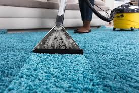 Carpet Cleaning In 2020 Professional Carpet Cleaning How To Clean Carpet Carpet Cleaning Service