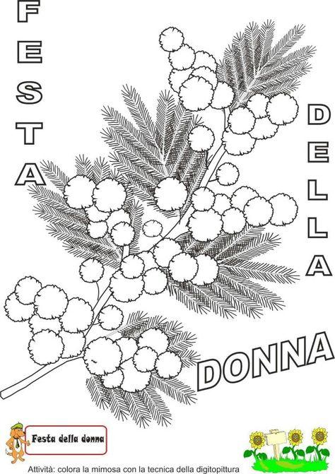 Mimosa Da Colorare.Festa Della Donna Maestra Mary