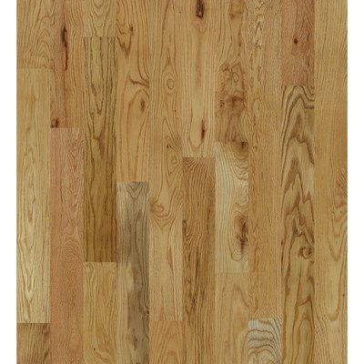 Shaw Floors Inglewood Oak 1 2 Thick X 5 Wide Solid Hardwood Flooring Oak Hardwood Flooring Flooring Hardwood