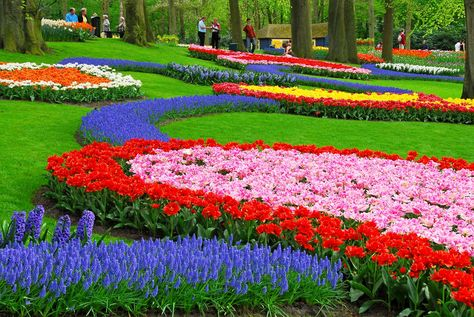 This flower garden is the world's largest
