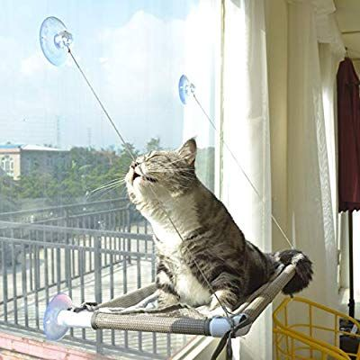 Amazon Com Cat Window Perch Cat Hammock Window Seat Space Saving And Safety Window Mounted Cat Bed For Larg Cat Hammock Window Cat Window Perch Cat Hammock