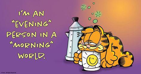 Garfield on