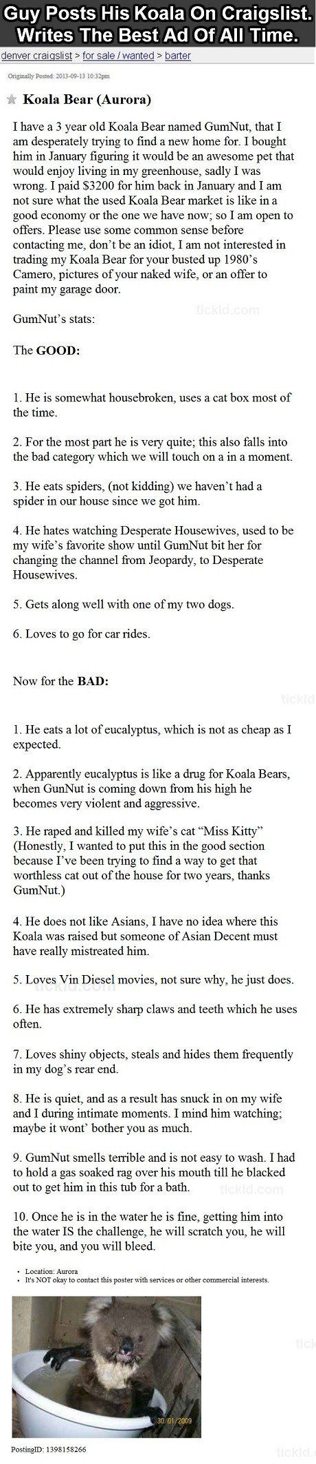 Gumnut The Koala Funny Craigslist Ads Funny Best Funny Pictures